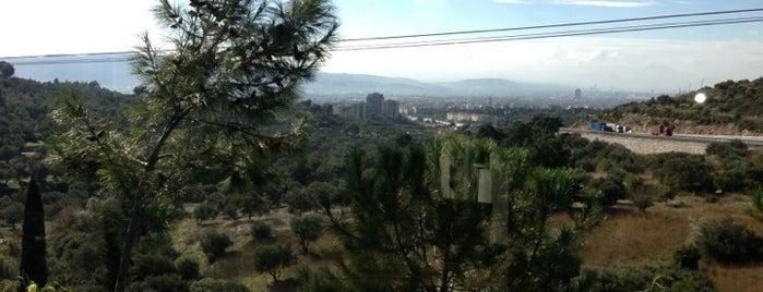 Vebaş is one of İzmir'de uğranılması gereken lezzet noktaları.