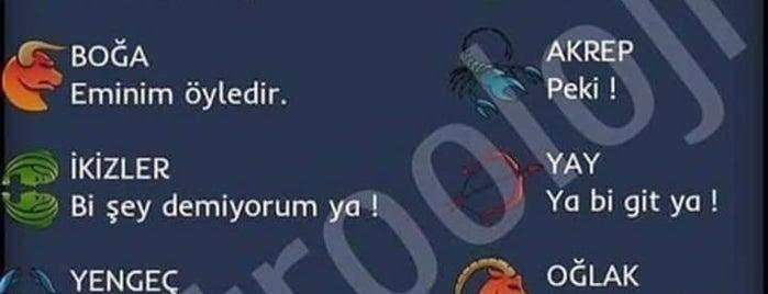 Adana Gece Hayatı Turgut Özal Mado Yakını