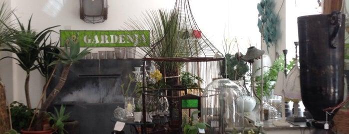 Gardenia is one of Brunch e merende - Milano.