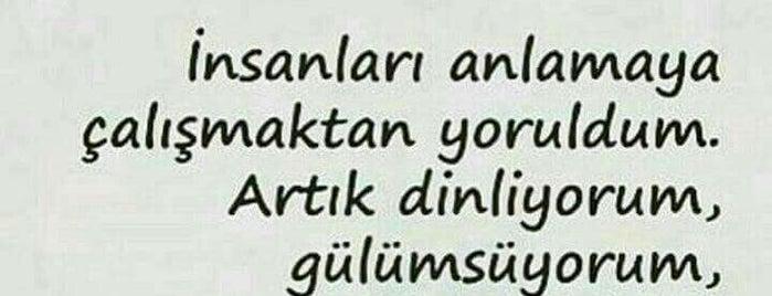 Değirmendere~Izmit Otobüsü is one of ....