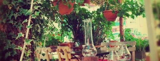 Sardunya Cafe is one of Ankara.