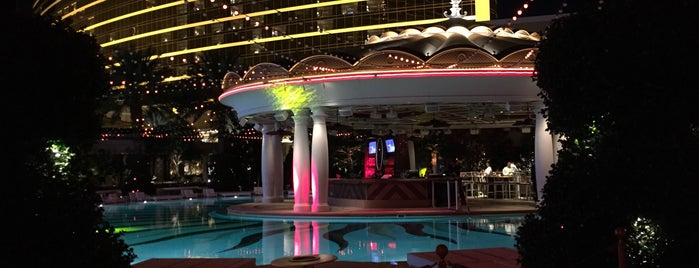 XS Nightclub is one of A State-by-State Guide to 2015's Most Popular Bars.