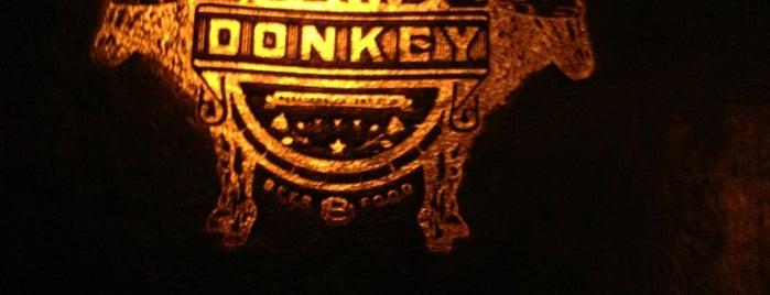 Blind Donkey is one of Cor Cor's World NOMination.