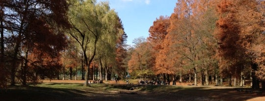 Akigase Park is one of 東京.