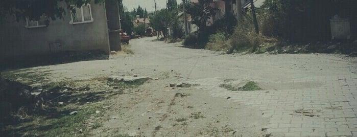 Kıranşeyh is one of Kütahya | Merkez Köyler.