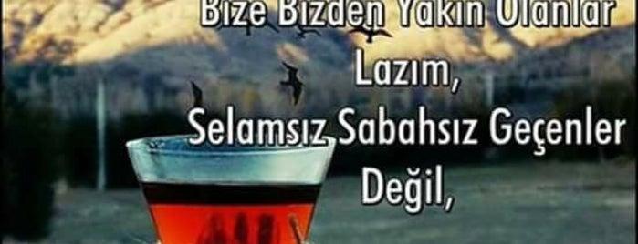 Faralya is one of Tatil rotası.