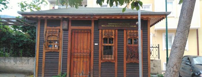Mollagürani is one of Bursa | Osmangazi İlçesi Mahalleleri.
