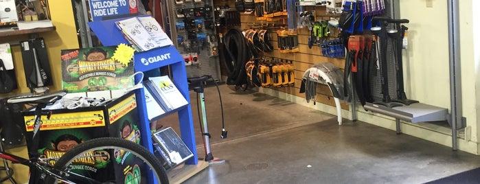 Berkshire Bike & Board is one of SNOWBOARD SHOPS.