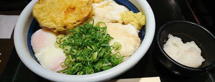 Marugame Seimen is one of うどん.