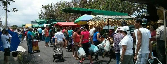 Feria del Agricultor is one of Ferias del Agricultor.