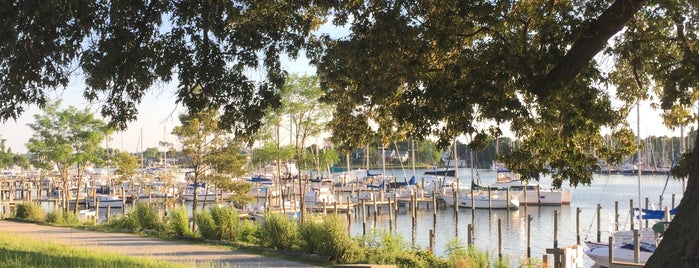 Calvert Marina is one of The Great Outdoors.