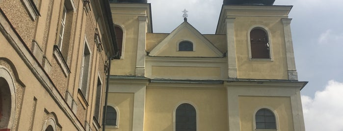 Poutní kostel Nanebevzetí Panny Marie is one of churches.