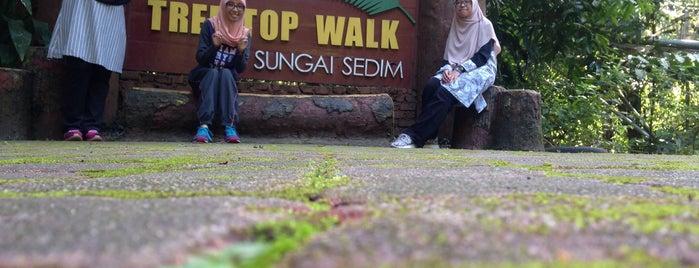 Hutan Lipur Sg Sedim is one of Cuti-cuti malaysia.