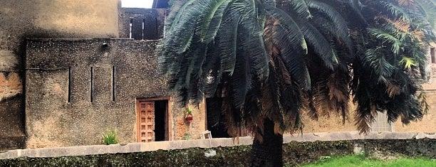 Old Slave Market is one of Tanzanya Zanzibar Gezilecek Yerler.