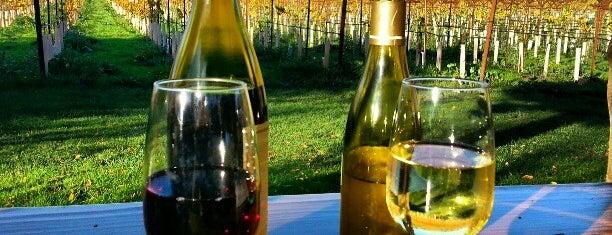 Navarro Vineyards & Winery is one of MENDOCINO, CA.