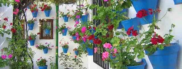 Casa-Patio de la calle Trueque, 4 is one of Patios de la Zona San Lorenzo.
