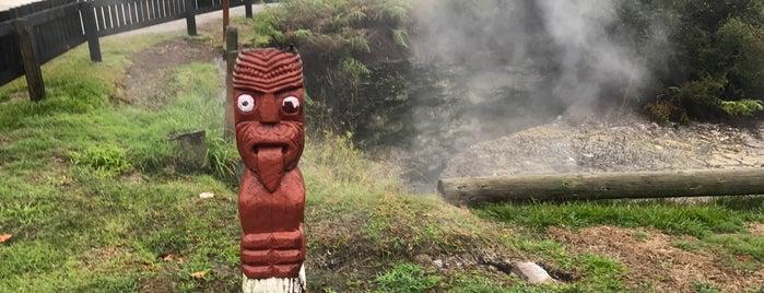 Whakarewarewa is one of NZ to go.