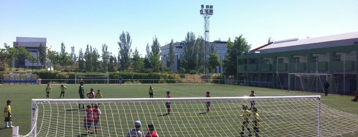 The 15 best places for sports in madrid for Piscina luis aragones