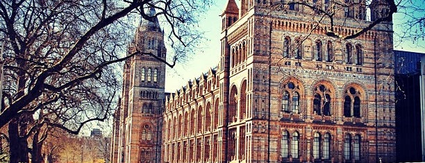 Natural History Museum is one of Londres.
