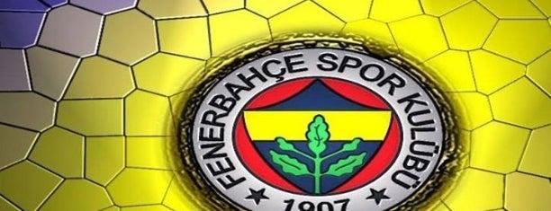 Şükrü Saraçoğlu Stadı is one of İSTANBUL #2.