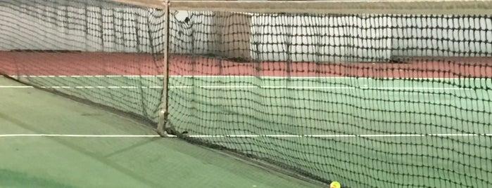 Compass Heights Tennis Court is one of Sengkang B.
