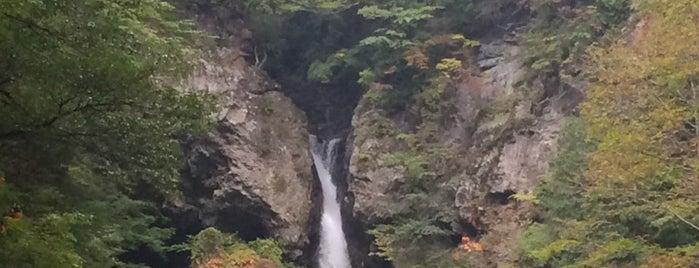 根尾の滝 is one of 日本の滝百選.