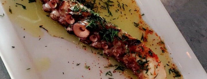 Mediterranean Exploration Company is one of The 15 Best Places for An Octopus in Portland.