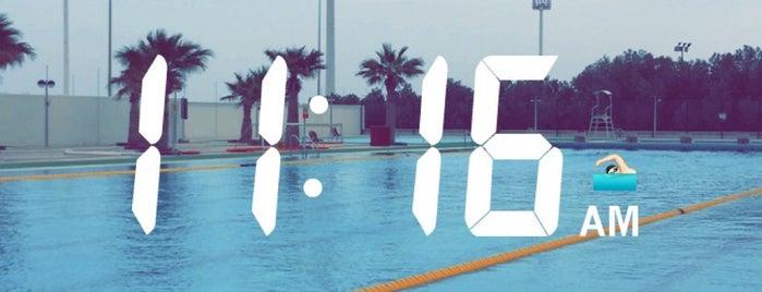 Qatar gym 39 s for Al sadd sports club swimming pool