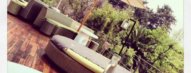Condesa DF (Roof Lounge) is one of Condesa-Roma.