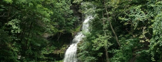 Cathedral Falls is one of Wild and Wonderful West Virginia.
