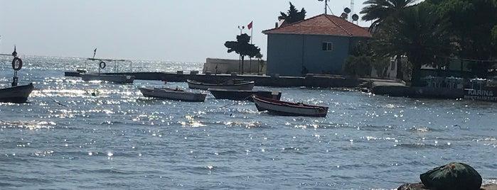 tarihi gümrük balık restaurant is one of Orhan.