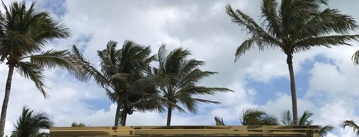 Faena Hotel Miami Beach is one of Miami - South Beach.