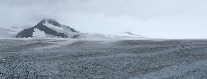 Harding Icefield Trail is one of Alaska To-Do.