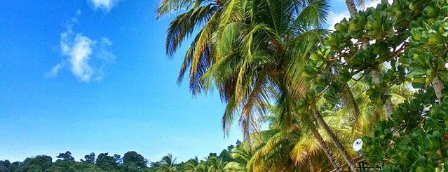 Castara Beach is one of #60 days in Tobago.