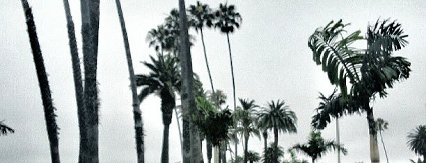 Palisades Park is one of 87 Free Things To Do in LA.