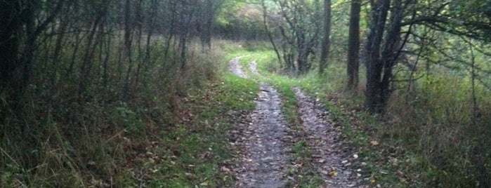 Sulphur Creek Trail is one of Outdoors.