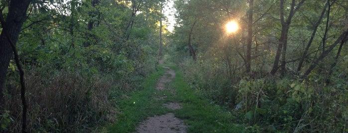 RBG Grindstone Creek is one of Outdoors.