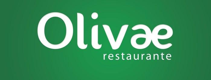 Olivae Cozinha Contemporânea is one of Bons conhecidos.