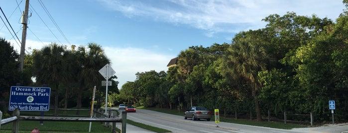 Ocean Ridge Hammock Park is one of Favorites.