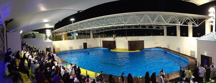 Fakieh Aquarium is one of The Tour.