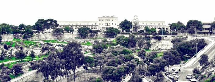 Castillo San Fernando is one of Alicante urban treasures.