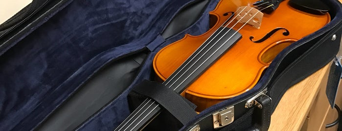Johnson String Instruments is one of To try (USA except NYC & HI).