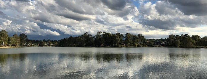 Forest Lake Lake is one of Queensland Baby!.