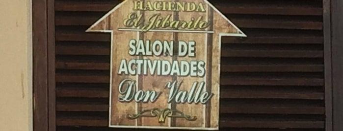 Parador Hacienda El Jibarito is one of Puerto Rico:Explore Beyond the Shore.