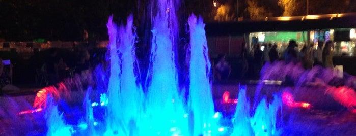Поющие Фонтаны / Singing Fountains is one of Сочинские места.