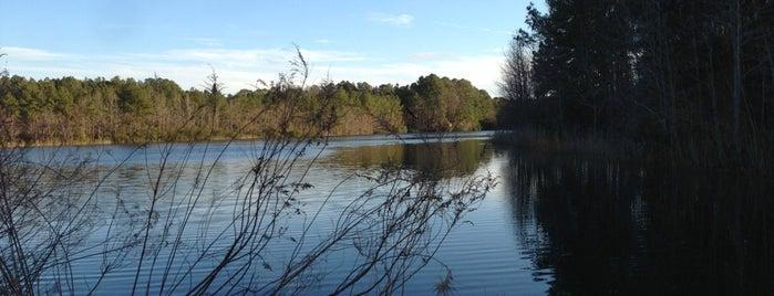 Sandy Bottom Bark Park is one of Guide to Hampton's best spots.