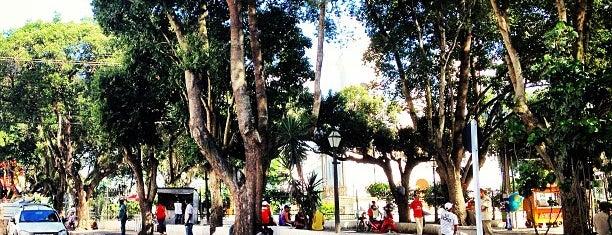 Praça da Matriz is one of cruz das almas.
