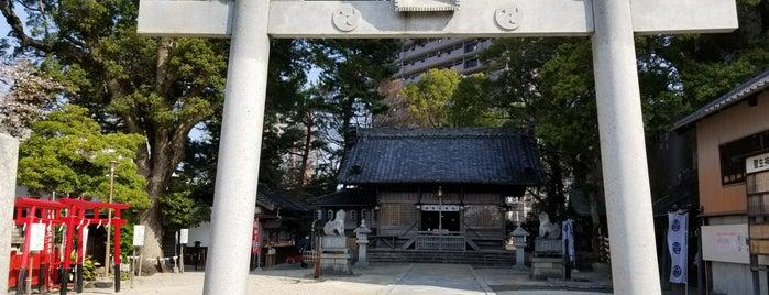 菅生神社 is one of グレート家康公「葵」武将隊.