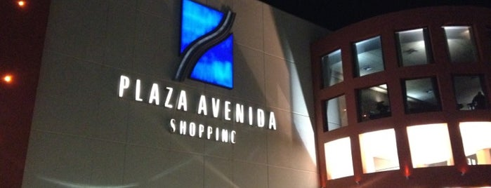 Plaza Avenida Shopping is one of Fabi.