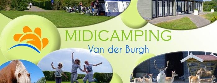 Midicamping Van der Burgh is one of Favo.